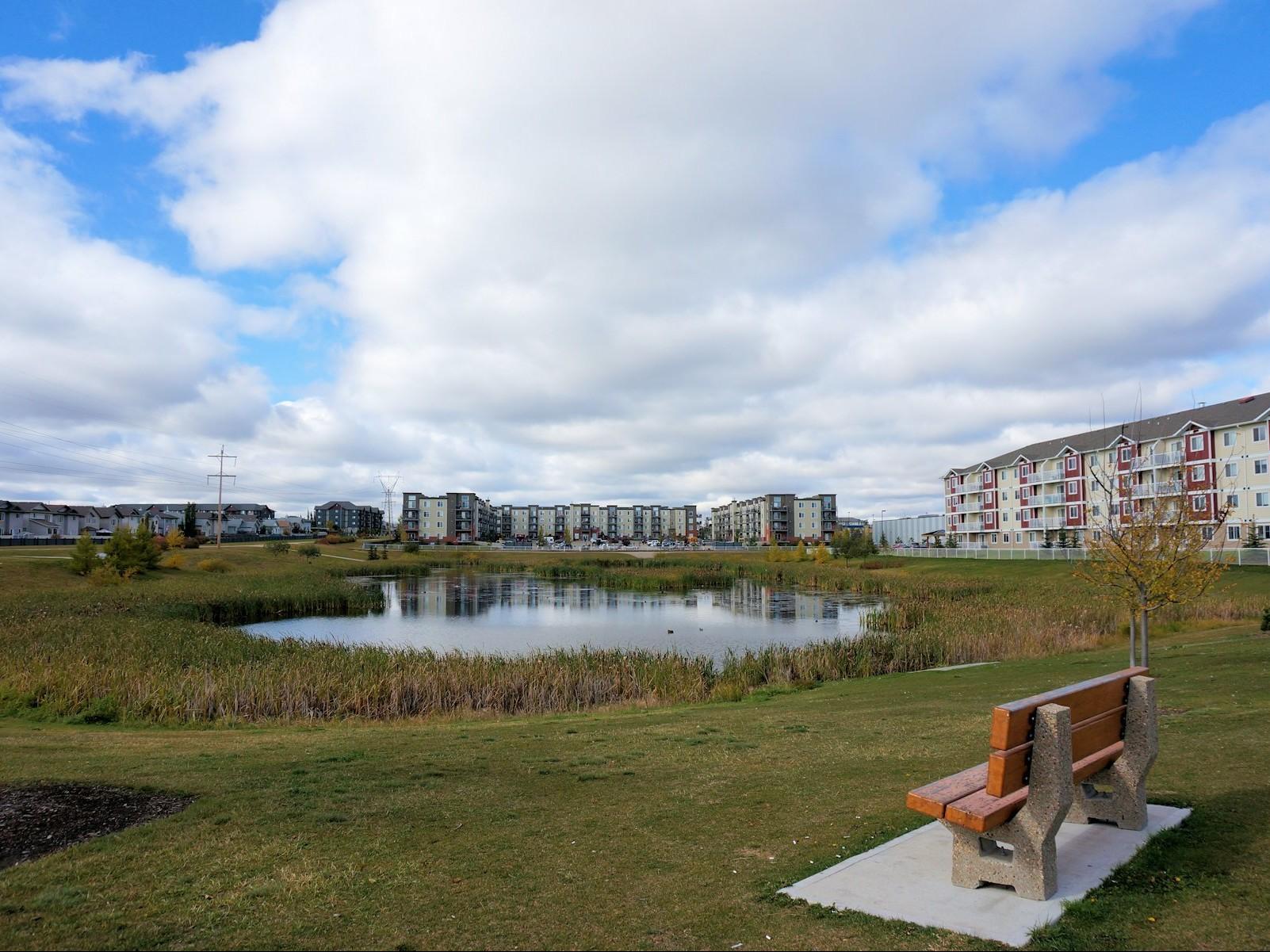 Neighborhood Profile: Brintnell