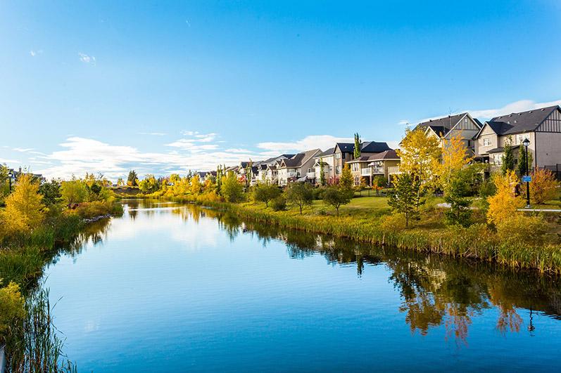 Neighborhood Profile: Griesbach